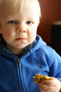 Boy eating an oatmeal cookie