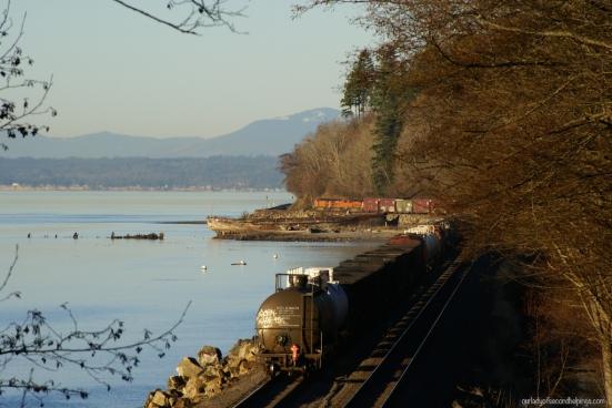 Train along the coast
