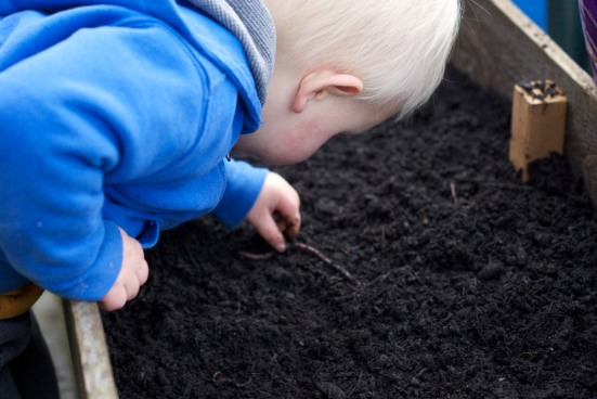Boy looking at a worm