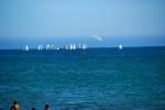 Sailboats off Santa Cruz Beach