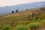 Smoky Farm Land with Wooden Fence Posts