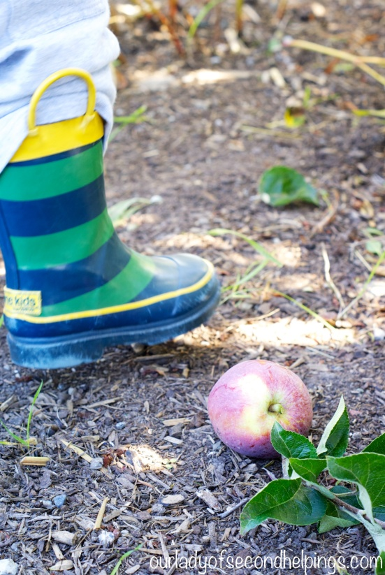 Child's rubber boot and a fallen apple