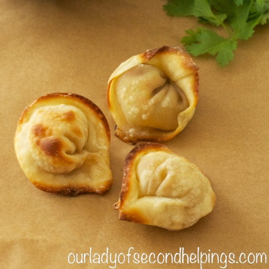 Appetizers with wontons