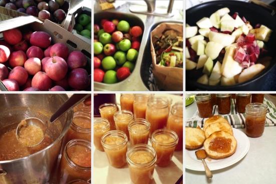 Apple Canning - sauce, jam, chutney